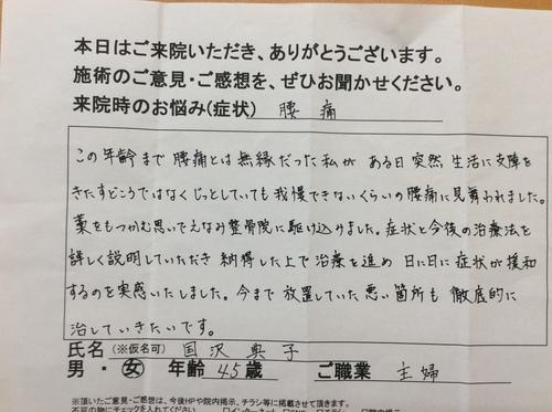 国沢②.JPG